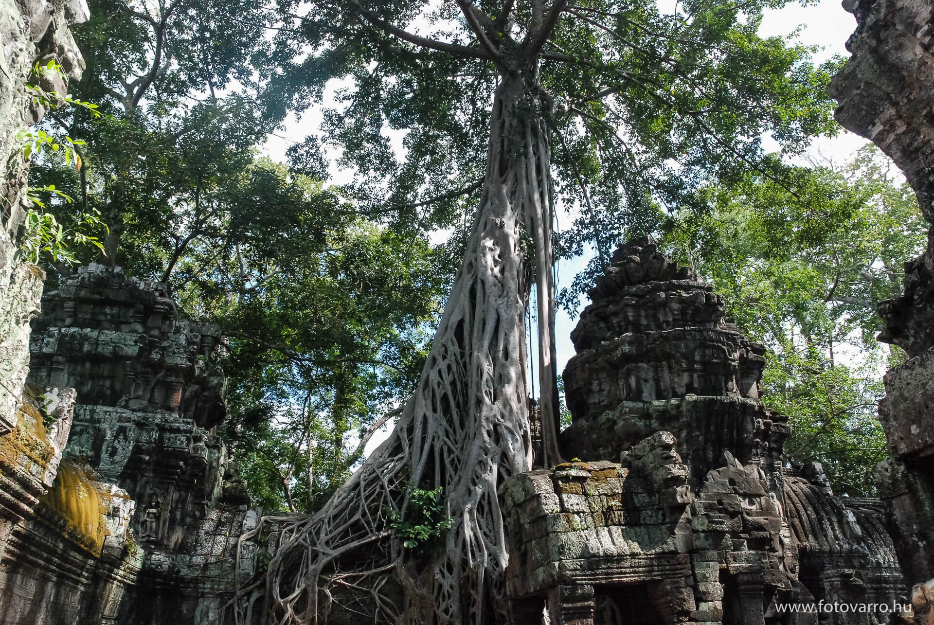 Kambodzsa_fotovarro_2