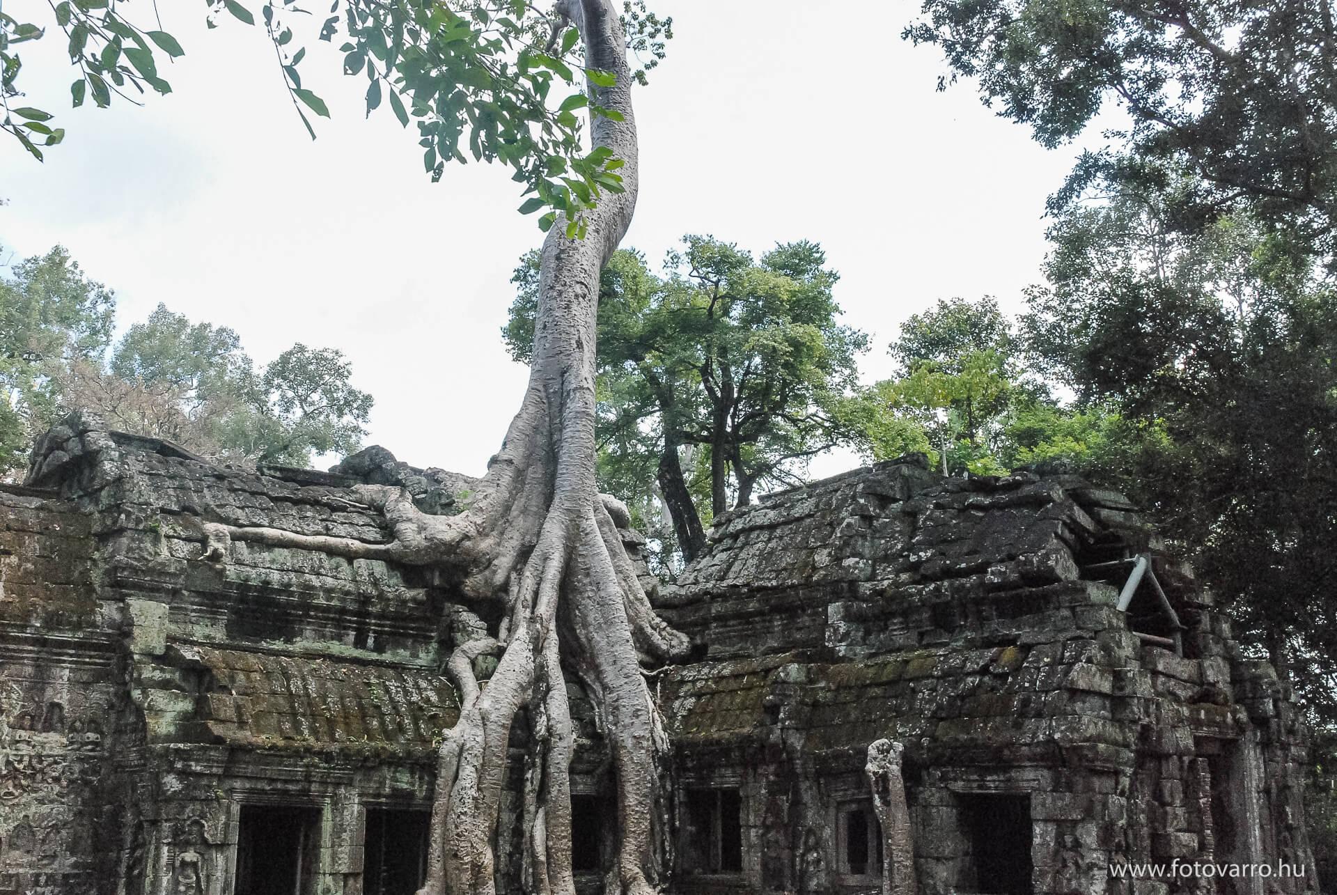 Kambodzsa_fotovarro_3